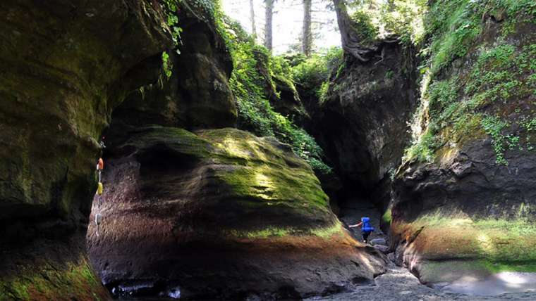 Cave-canadienne