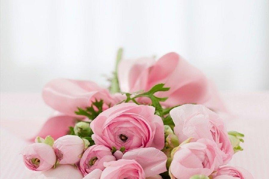 Envoyer les plus belles fleurs d'anniversaire _ quelques suggestions pour vous aider